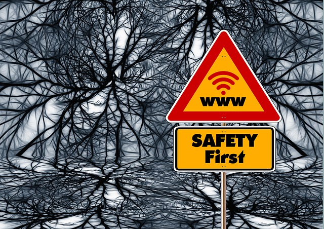 Two signs: 'Safety First' and 'www', against an ominous looking black web/network effect